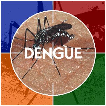 Librate de los mosquitos este verano